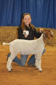 Texas Livestock Shows, McLennan County, Extraco Events Center