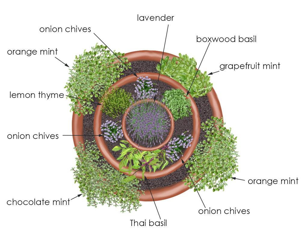 Garden Ideas Herb Container