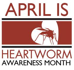 HeartwormAwareness