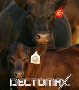 dectomax pour on