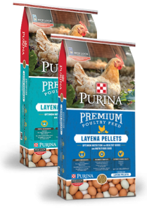 purina layena chicken feed