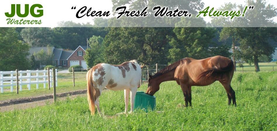 jug waterers