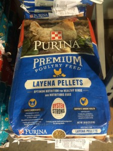 purina layena poultry feed