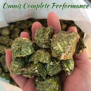 omnis complete performance hay cubes