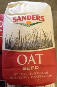 oats seed