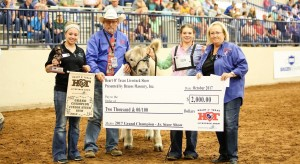 heart of texas livestock show fair and rodeo