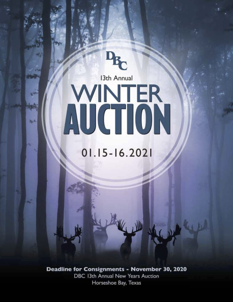 dbc winter auction