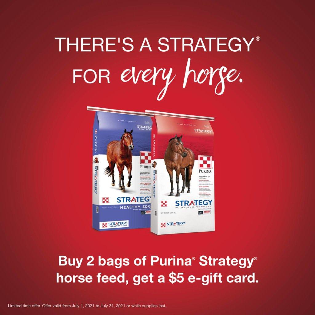 purina horse feed strategy healthy edge feed greatness barrel racing