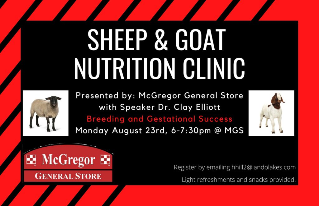 sheep and goat nutrition clinic