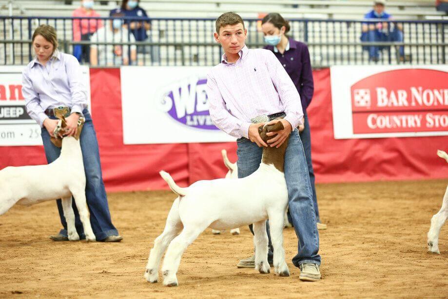 hot livestock show fair rodeo extraco event center waco heart of texas